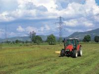 Thüringer Landwirtschaft einheitlicher vermarkten