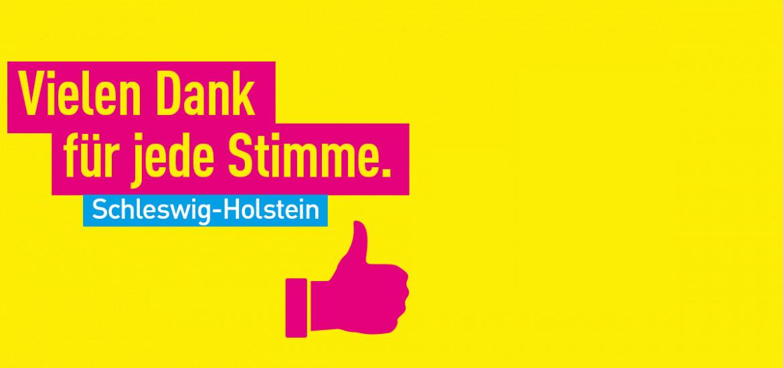 Landtagswahl in Schleswig-Holstein: Kubicki führt FDP zweistellig ins Ziel