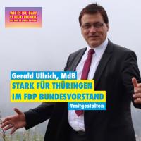 Gerald Ullrich, MdB