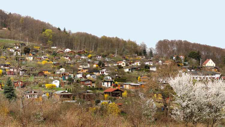 Kleingärten in Jena