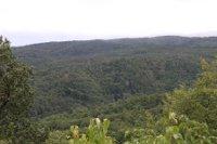 Geplanter Standort auf dem Milmesberg