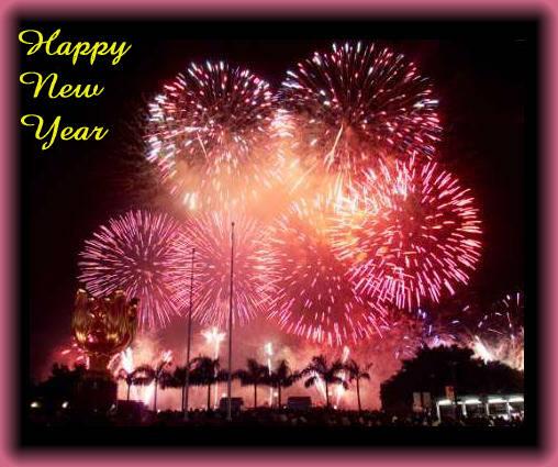 Ein gesundes und glückliches Neues Jahr FDP Saale-Orla online