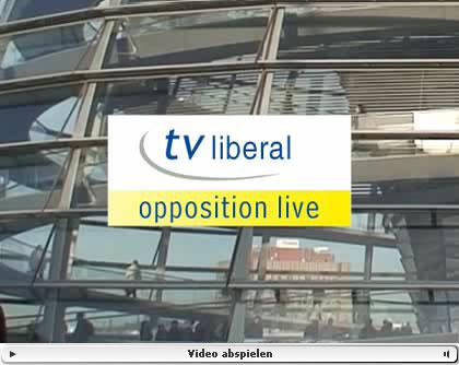 Die FDP via Internet-TV